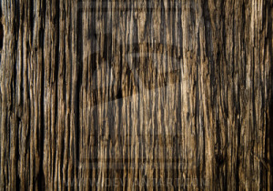 wood_texture_by_nickistock-d18e71w